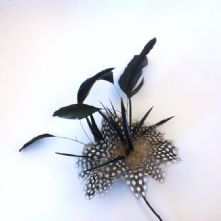 Black with spot feather mount